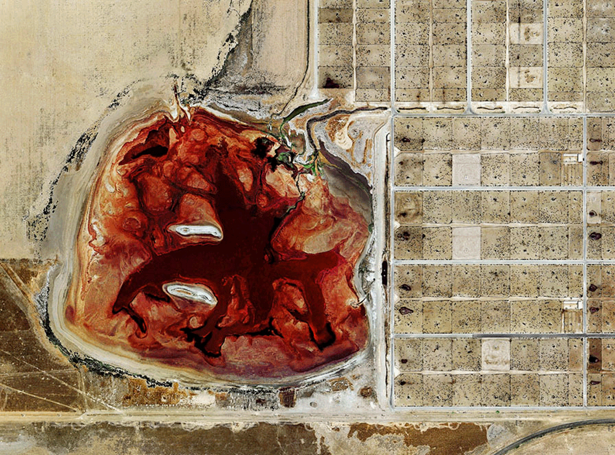 a feedlot waste lagoon - the black dots inside the grid are cows